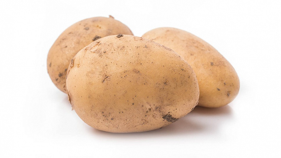 Potatoes  Storage parameters
